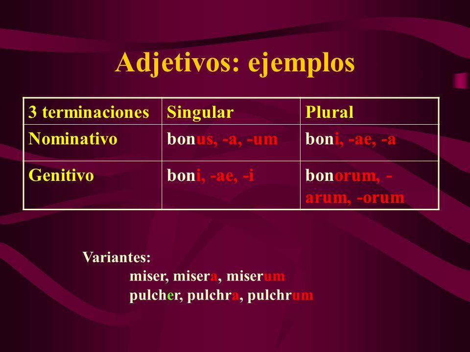 Adjetivos: ejemplos 3 terminacionesSingularPlural Nominativobonus, -a, -umboni, -ae, -a Genitivoboni, -ae, -ibonorum, - arum, -orum Variantes: miser,