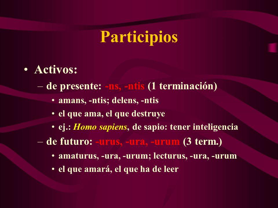 Participios Activos: –de presente: -ns, -ntis (1 terminación) amans, -ntis; delens, -ntis el que ama, el que destruye ej.: Homo sapiens, de sapio: ten