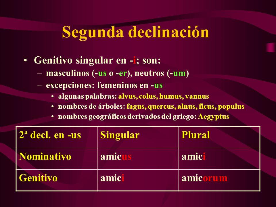 Segunda declinación Genitivo singular en -i; son: –masculinos (-us o -er), neutros (-um) –excepciones: femeninos en -us algunas palabras: alvus, colus