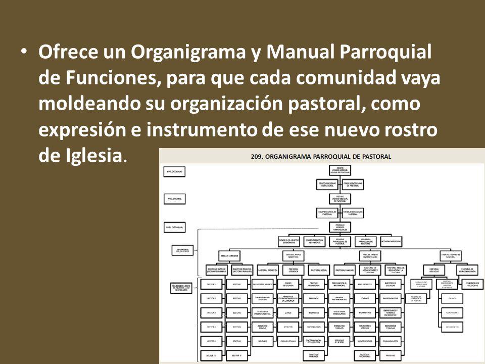 Ofrece un Organigrama y Manual Parroquial de Funciones, para que cada comunidad vaya moldeando su organización pastoral, como expresión e instrumento