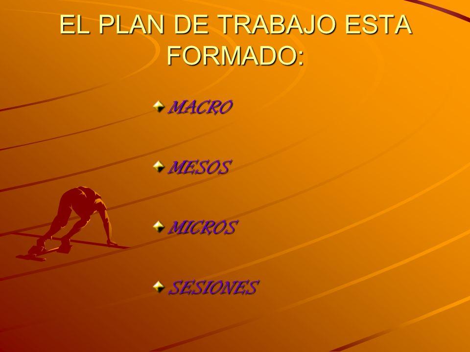 EL PLAN DE TRABAJO ESTA FORMADO: MACROMESOSMICROSSESIONES