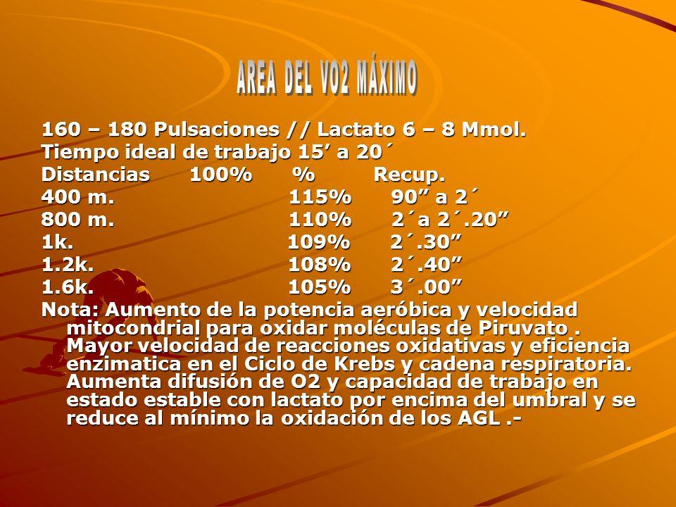 160 – 180 Pulsaciones // Lactato 6 – 8 Mmol. Tiempo ideal de trabajo 15 a 20´ Distancias 100% % Recup. 400 m. 115% 90 a 2´ 800 m. 110% 2´a 2´.20 1k. 1