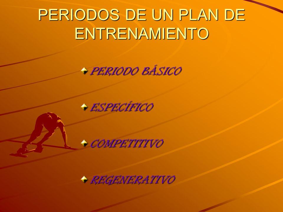 PERIODOS DE UN PLAN DE ENTRENAMIENTO PERIODO BÁSICO ESPECÍFICOCOMPETITIVOREGENERATIVO