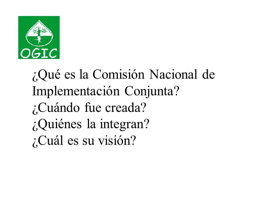 ¿Qué es la Comisión Nacional de Implementación Conjunta.