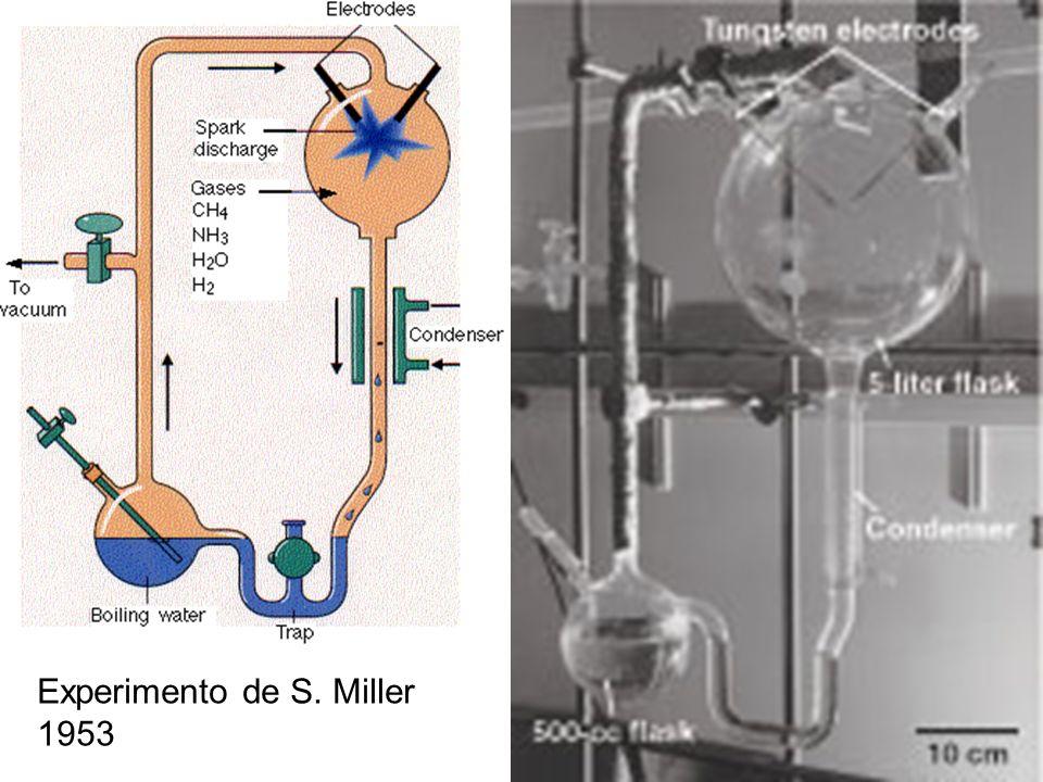 Experimento de S. Miller 1953