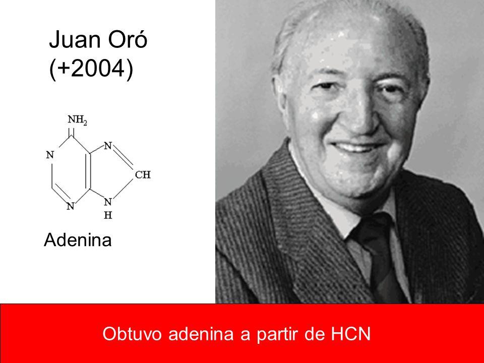 Juan Oró (+2004) Obtuvo adenina a partir de HCN Adenina