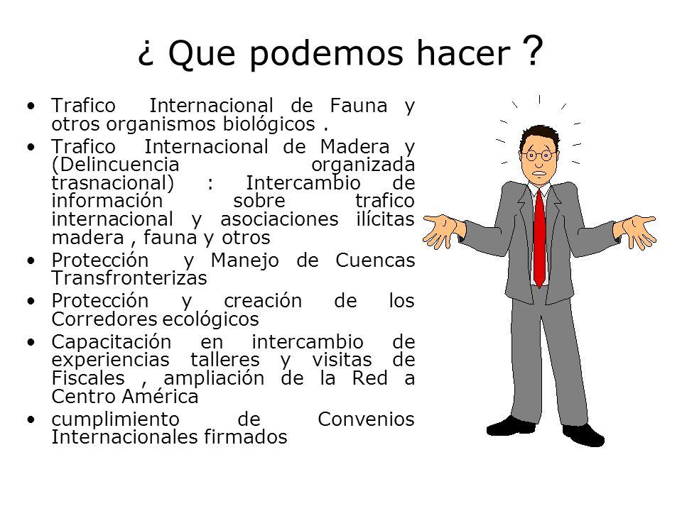 ¿ Que podemos hacer ? Trafico Internacional de Fauna y otros organismos biológicos. Trafico Internacional de Madera y (Delincuencia organizada trasnac