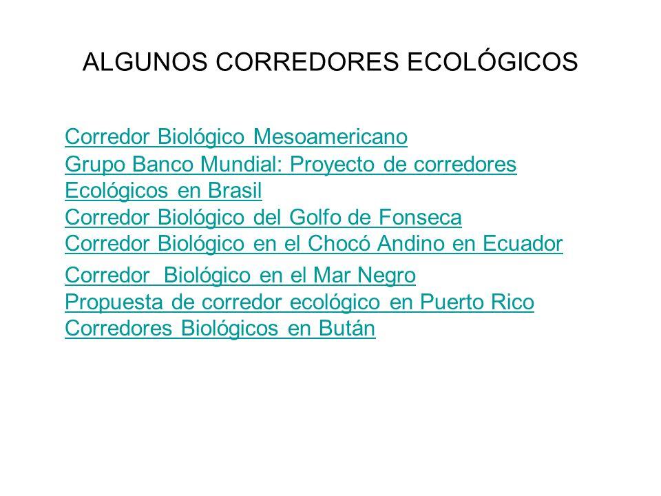 ALGUNOS CORREDORES ECOLÓGICOS Corredor Biológico Mesoamericano Grupo Banco Mundial: Proyecto de corredores Ecológicos en Brasil Corredor Biológico del