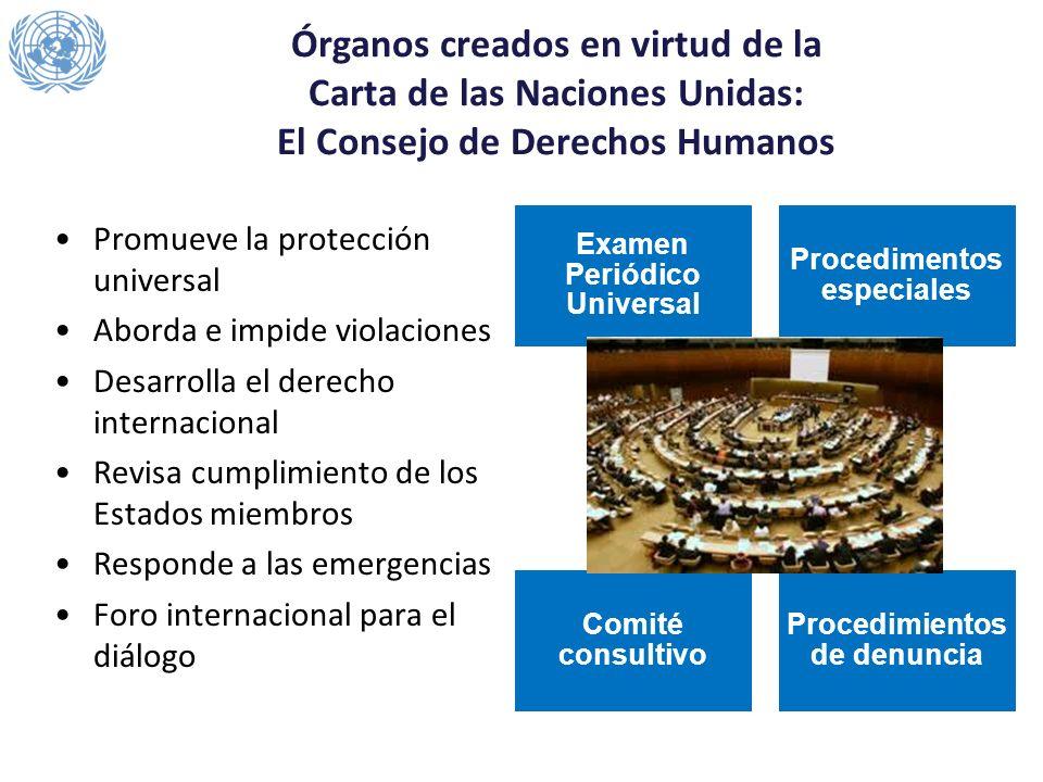 Promueve la protección universal Aborda e impide violaciones Desarrolla el derecho internacional Revisa cumplimiento de los Estados miembros Responde