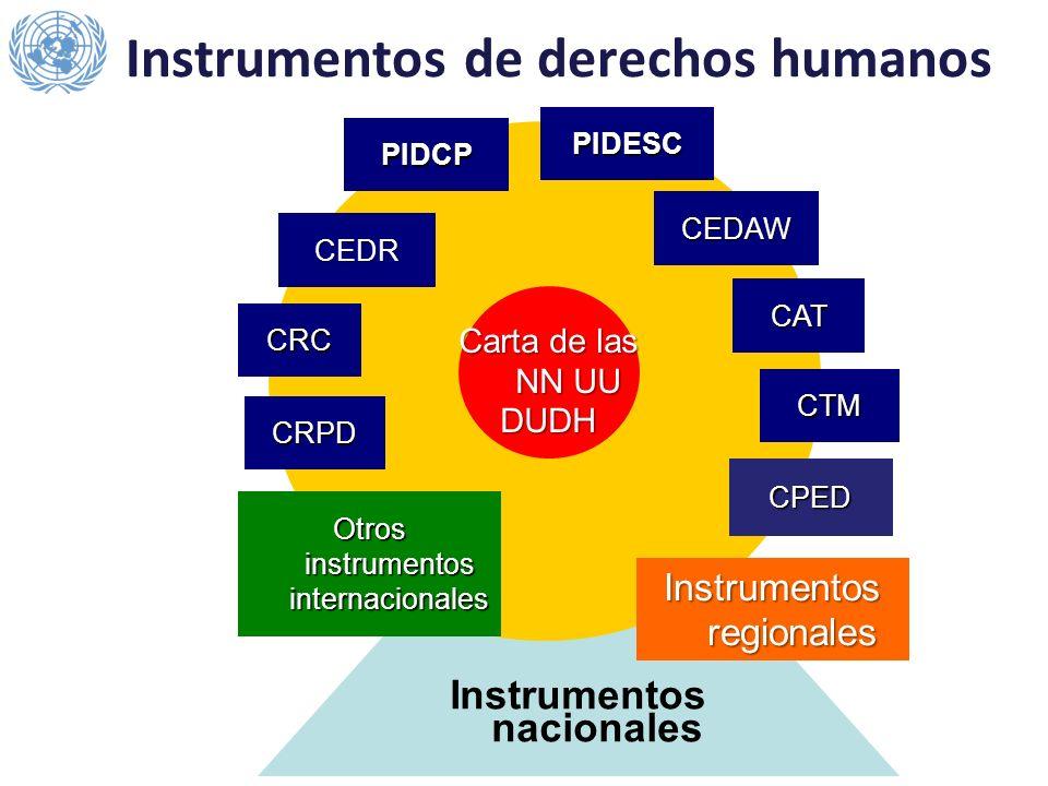 Instrumentos nacionales Carta de las NN UU DUDH PIDCP PIDESC CEDR CEDAW CAT CRC CTM Otros instrumentos internacionales Instrumentos regionales Instrum