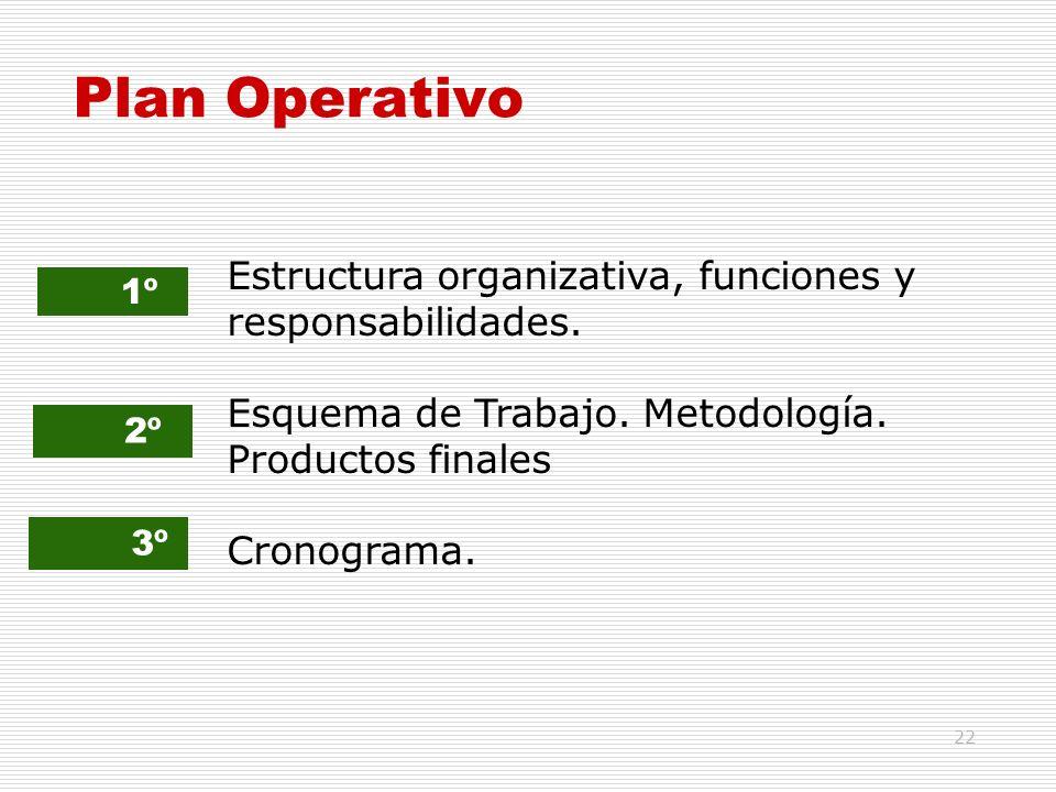 22 Plan Operativo 1º 2º 3º Estructura organizativa, funciones y responsabilidades. Esquema de Trabajo. Metodología. Productos finales Cronograma.