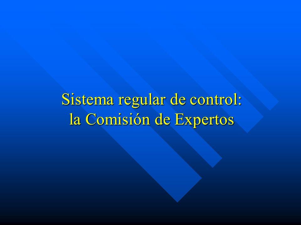 Sistema regular de control: la Comisión de Expertos