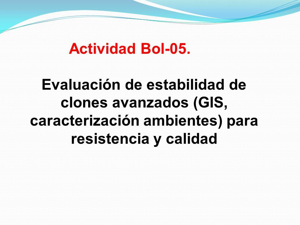 Actividad Bol-05.