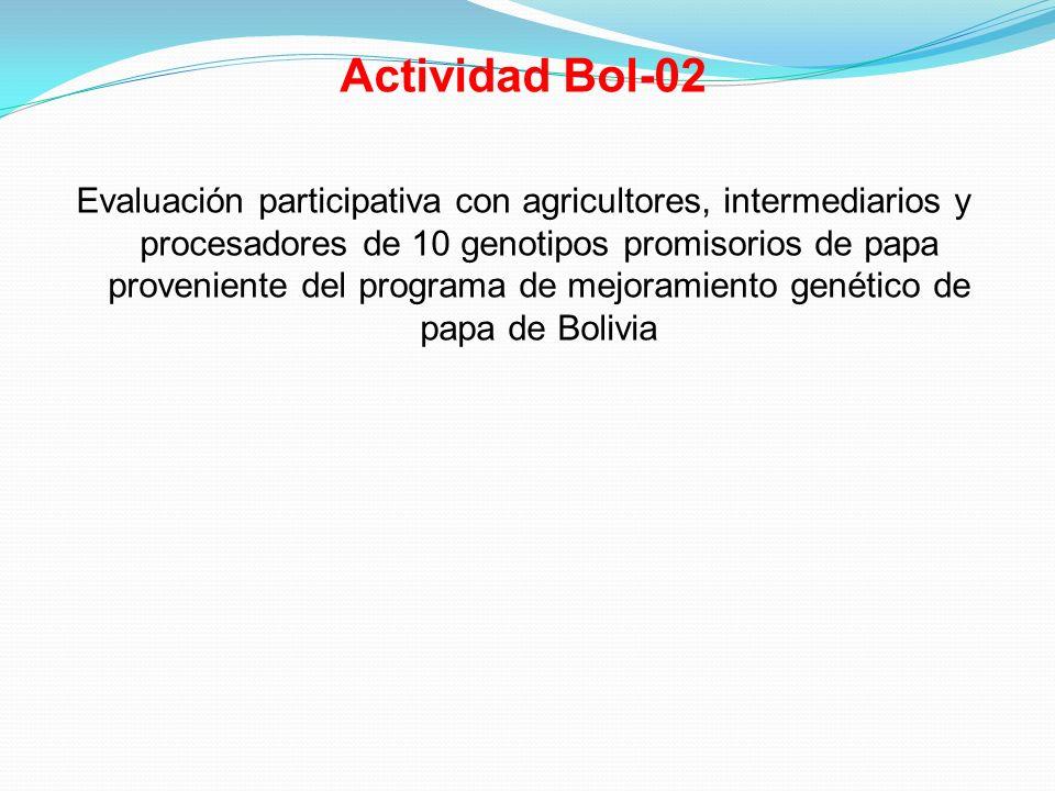 Actividad Bol-02 Evaluación participativa con agricultores, intermediarios y procesadores de 10 genotipos promisorios de papa proveniente del programa de mejoramiento genético de papa de Bolivia