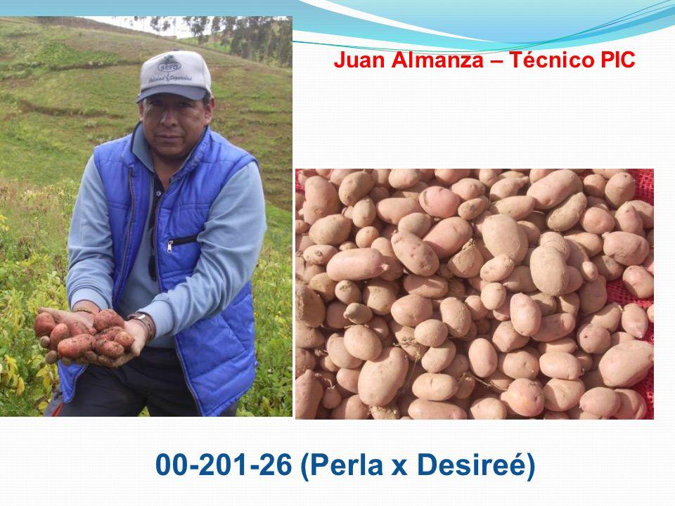 00-201-26 (Perla x Desireé) Juan Almanza – Técnico PIC