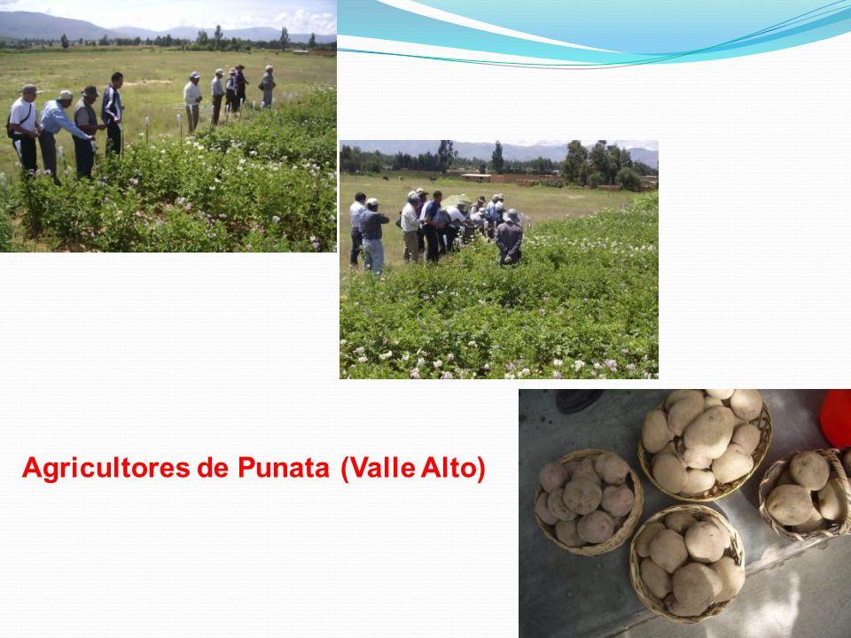 Agricultores de Punata (Valle Alto)