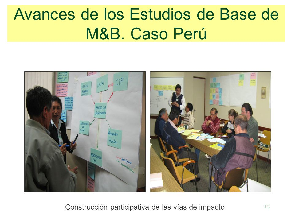 12 Avances de los Estudios de Base de M&B.