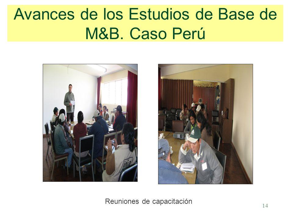 14 Avances de los Estudios de Base de M&B. Caso Perú Reuniones de capacitación