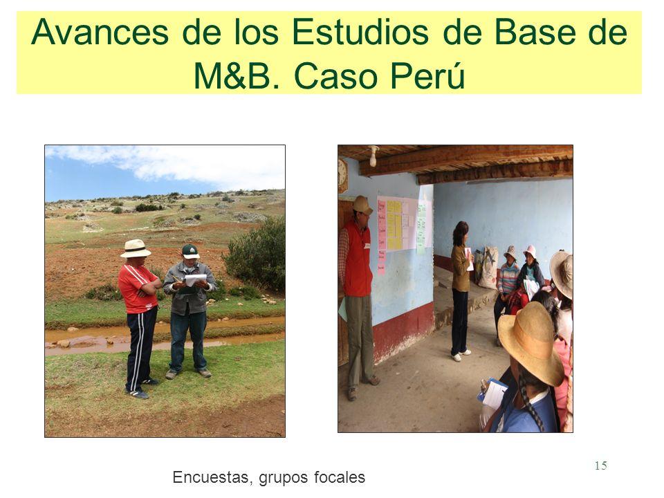 15 Avances de los Estudios de Base de M&B. Caso Perú Encuestas, grupos focales