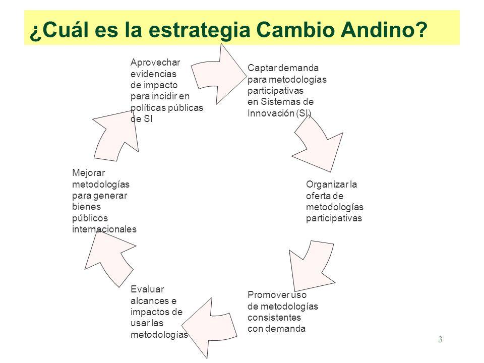 3 ¿Cuál es la estrategia Cambio Andino.