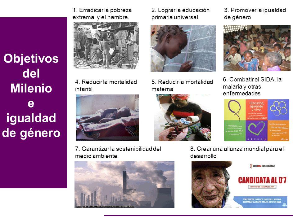 Objetivos del Milenio e igualdad de género 7. Garantizar la sostenibilidad del medio ambiente 8. Crear una alianza mundial para el desarrollo 4. Reduc