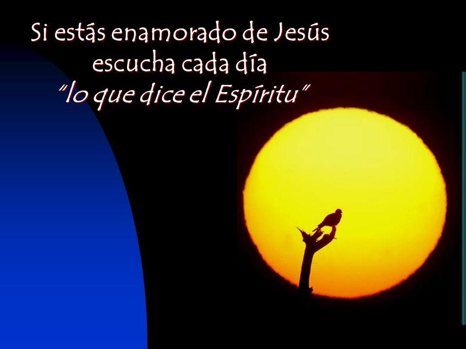 Si estás enamorado de Jesús escucha cada día lo que dice el Espíritu