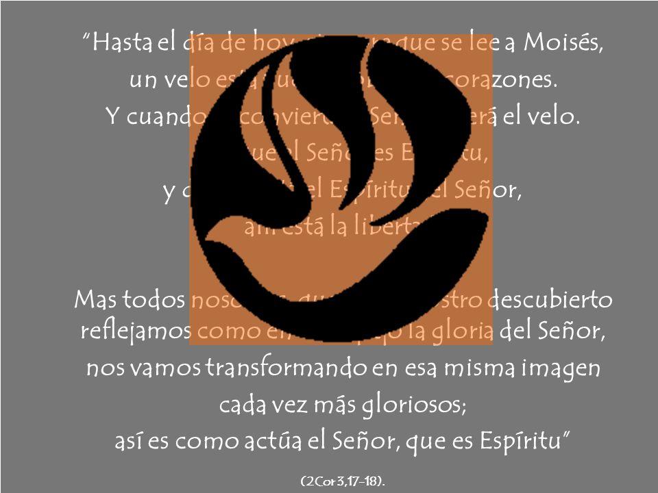 Hasta el día de hoy, siempre que se lee a Moisés, un velo está puesto sobre sus corazones. Y cuando se convierta al Señor, caerá el velo. Porque el Se