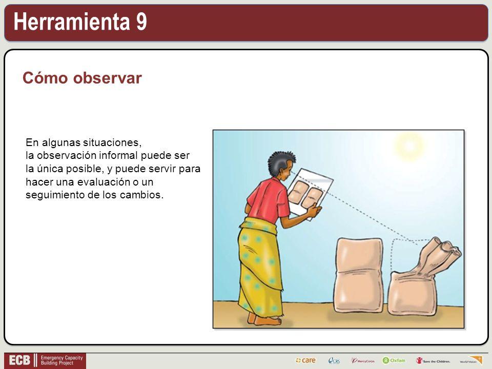 Herramienta 9 Cómo observar En algunas situaciones, la observación informal puede ser la única posible, y puede servir para hacer una evaluación o un seguimiento de los cambios.