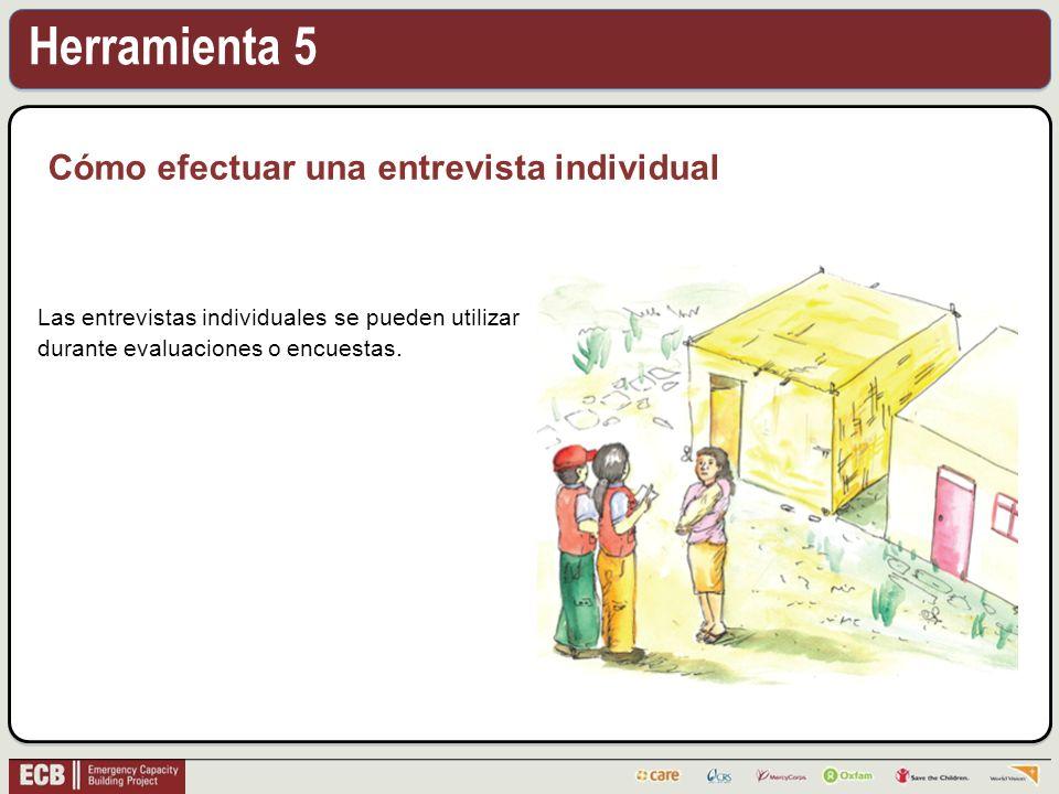 Herramienta 5 Cómo efectuar una entrevista individual Las entrevistas individuales se pueden utilizar durante evaluaciones o encuestas.
