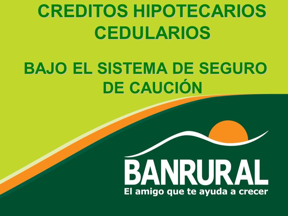 CREDITOS HIPOTECARIOS CEDULARIOS CREDITOS HIPOTECARIOS CEDULARIOS BAJO EL SISTEMA DE SEGURO DE CAUCIÓN BAJO EL SISTEMA DE SEGURO DE CAUCIÓN