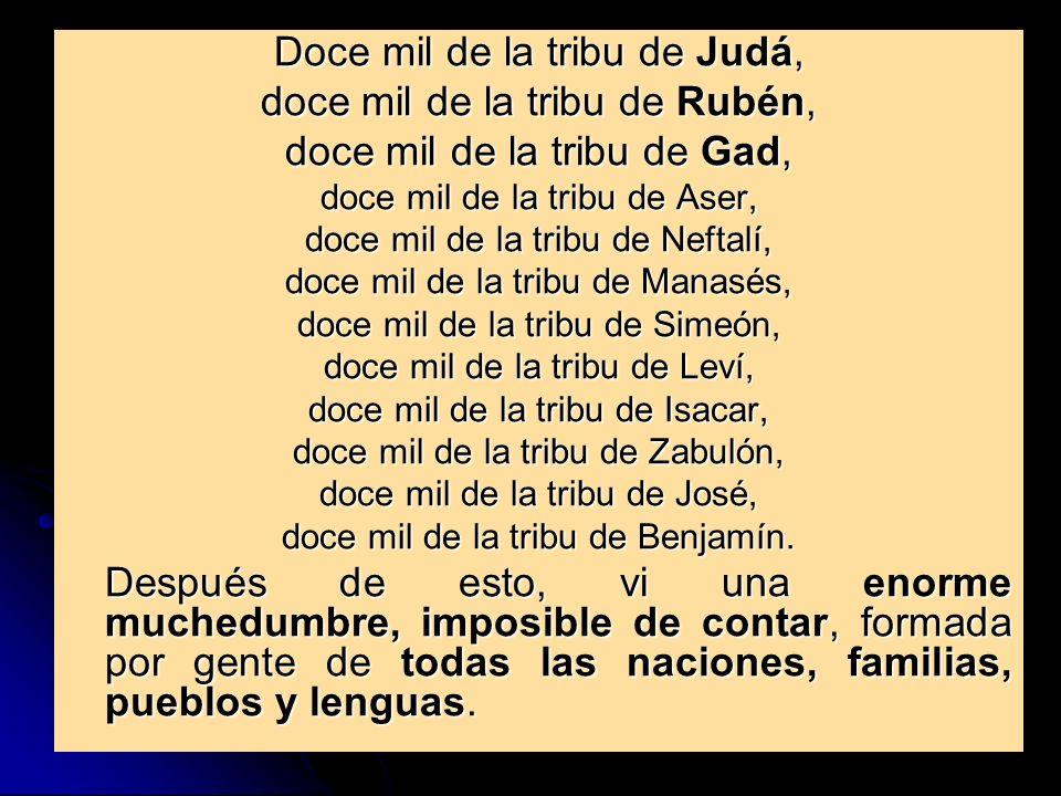 Doce mil de la tribu de Judá, doce mil de la tribu de Rubén, doce mil de la tribu de Gad, doce mil de la tribu de Aser, doce mil de la tribu de Neftal