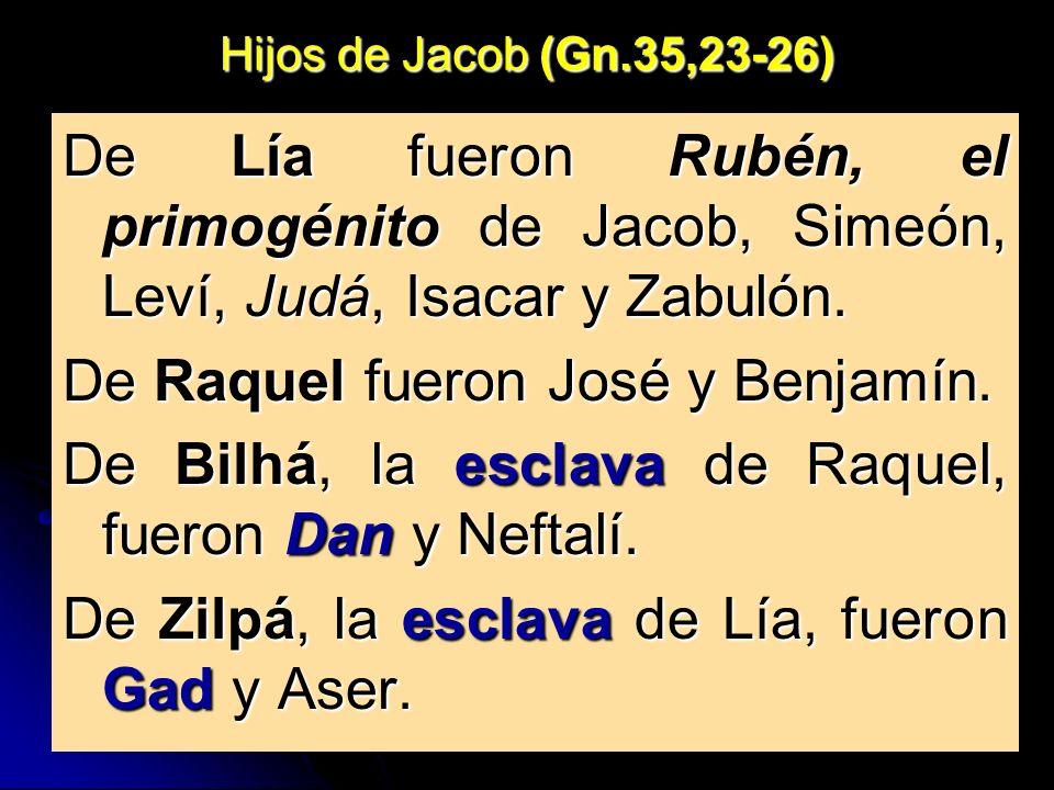 Hijos de Jacob (Gn.35,23-26) De Lía fueron Rubén, el primogénito de Jacob, Simeón, Leví, Judá, Isacar y Zabulón. De Raquel fueron José y Benjamín. De