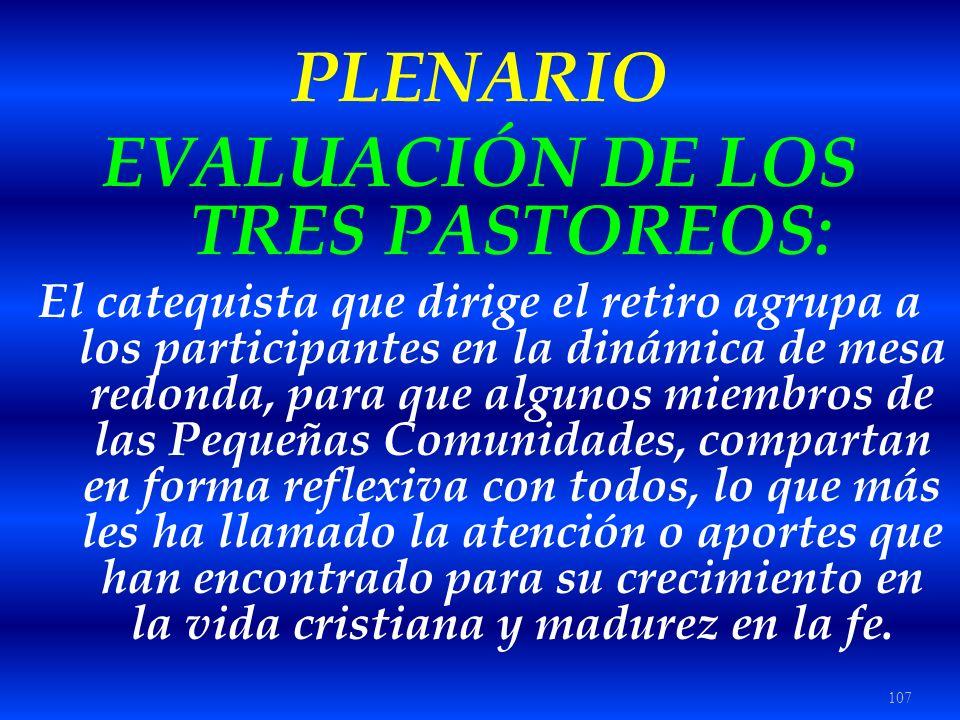 107 PLENARIO EVALUACIÓN DE LOS TRES PASTOREOS: El catequista que dirige el retiro agrupa a los participantes en la dinámica de mesa redonda, para que