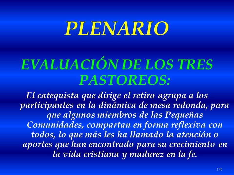 179 PLENARIO EVALUACIÓN DE LOS TRES PASTOREOS: El catequista que dirige el retiro agrupa a los participantes en la dinámica de mesa redonda, para que