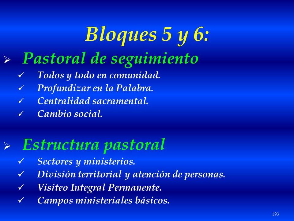 193 Bloques 5 y 6: Pastoral de seguimiento Todos y todo en comunidad. Profundizar en la Palabra. Centralidad sacramental. Cambio social. Estructura pa