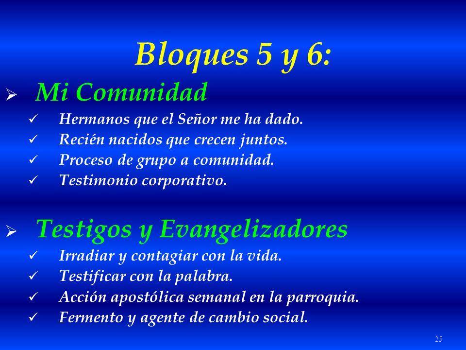 25 Bloques 5 y 6: Mi Comunidad Hermanos que el Señor me ha dado. Recién nacidos que crecen juntos. Proceso de grupo a comunidad. Testimonio corporativ