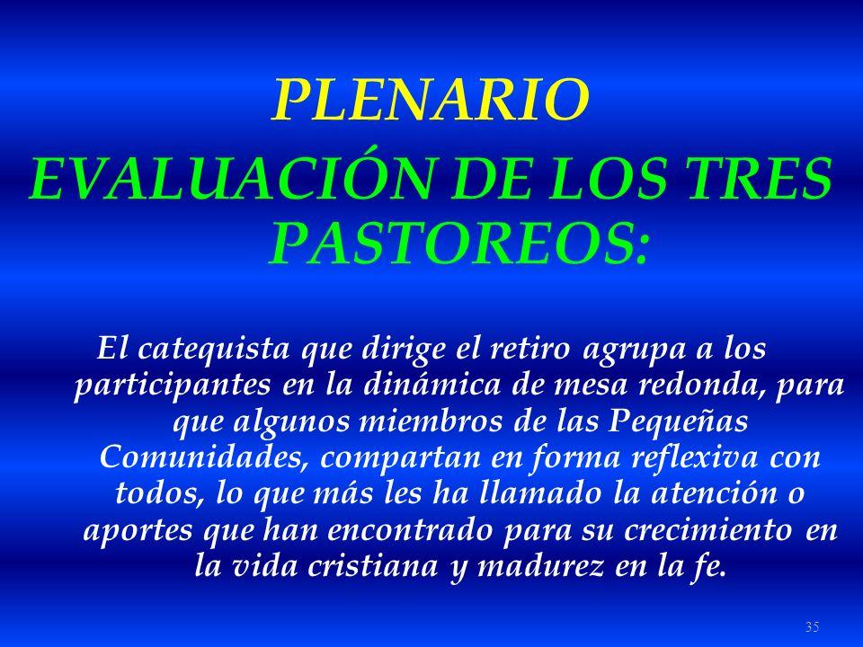 35 PLENARIO EVALUACIÓN DE LOS TRES PASTOREOS: El catequista que dirige el retiro agrupa a los participantes en la dinámica de mesa redonda, para que a