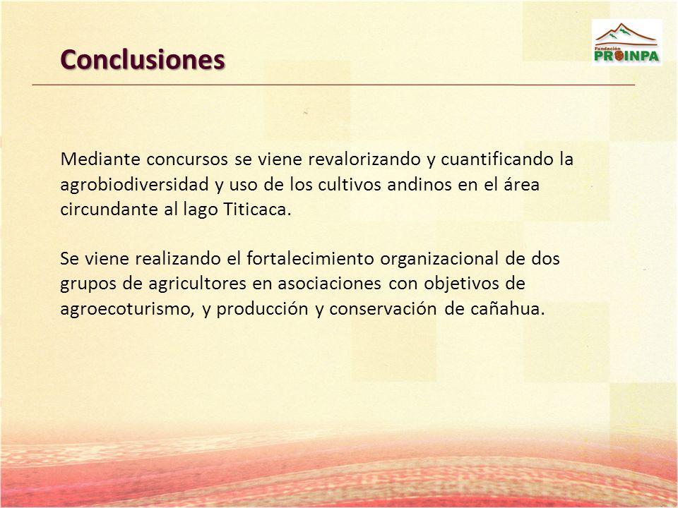 Conclusiones Mediante concursos se viene revalorizando y cuantificando la agrobiodiversidad y uso de los cultivos andinos en el área circundante al la