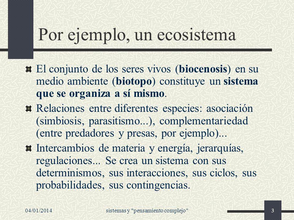 04/01/2014sistemas y pensamiento complejo 54 Independencia y dependencia Pero esta independencia es dependiente del ecosistema, es decir, se construye multiplicando los vínculos con el ecosistema.
