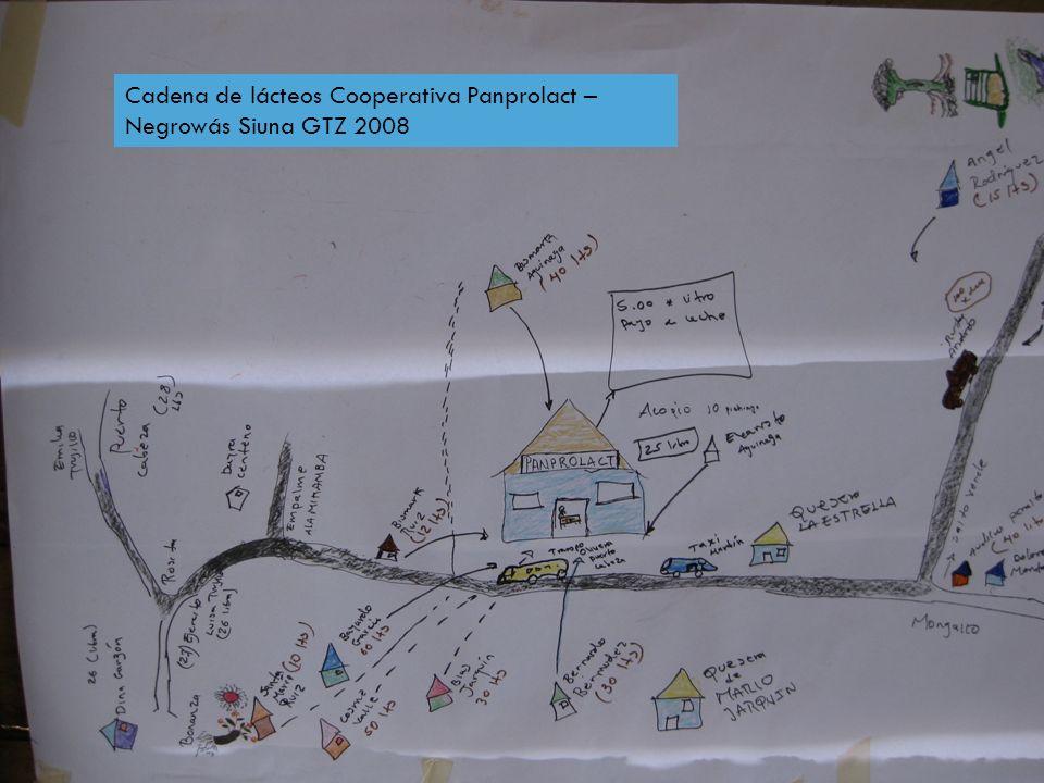 Cadena de lácteos Cooperativa Panprolact – Negrowás Siuna GTZ 2008