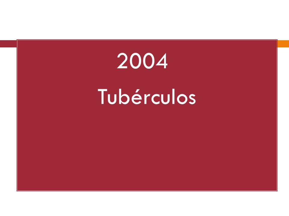 2004 Tubérculos