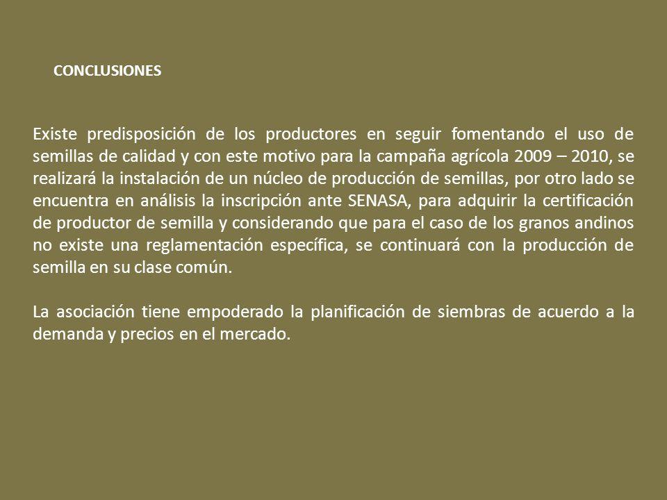Existe predisposición de los productores en seguir fomentando el uso de semillas de calidad y con este motivo para la campaña agrícola 2009 – 2010, se realizará la instalación de un núcleo de producción de semillas, por otro lado se encuentra en análisis la inscripción ante SENASA, para adquirir la certificación de productor de semilla y considerando que para el caso de los granos andinos no existe una reglamentación específica, se continuará con la producción de semilla en su clase común.