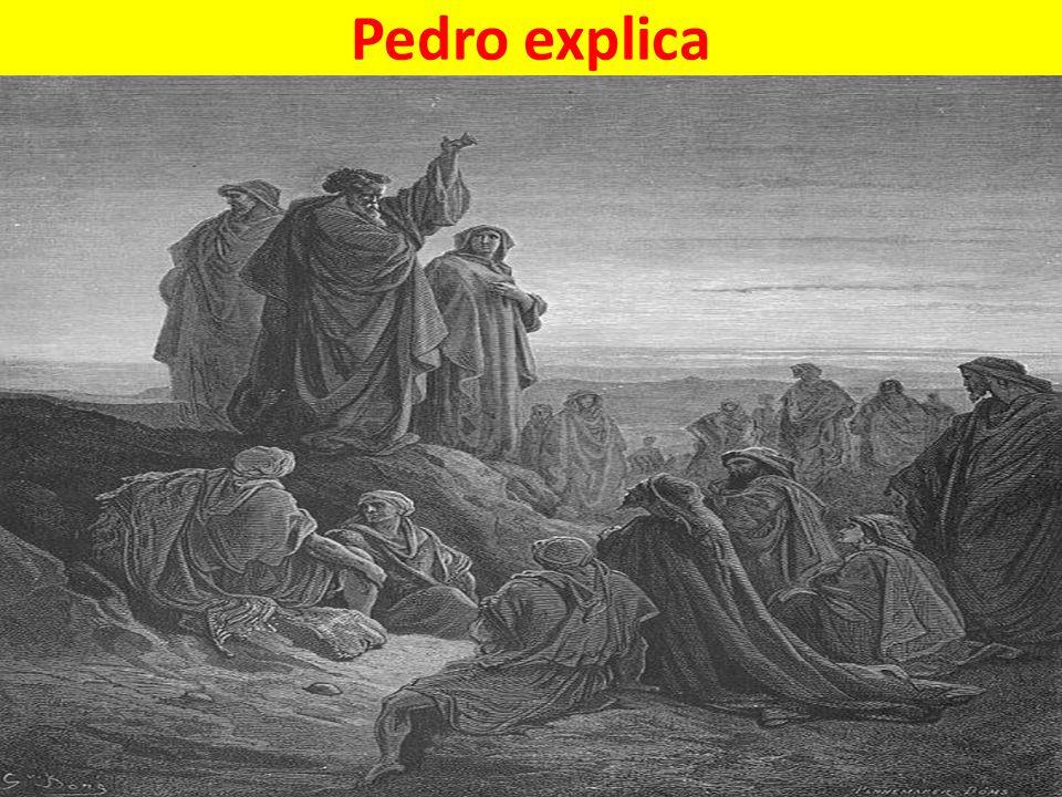 Pedro explica