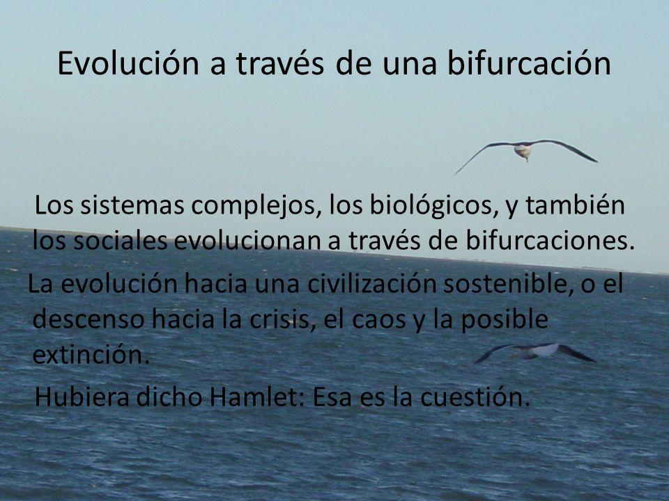 Evolución a través de una bifurcación Los sistemas complejos, los biológicos, y también los sociales evolucionan a través de bifurcaciones. La evoluci