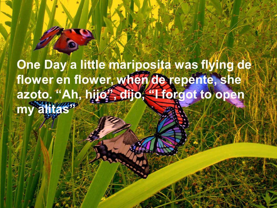 One Day a little mariposita was flying de flower en flower, when de repente, she azoto. Ah, hijo, dijo, I forgot to open my alitas