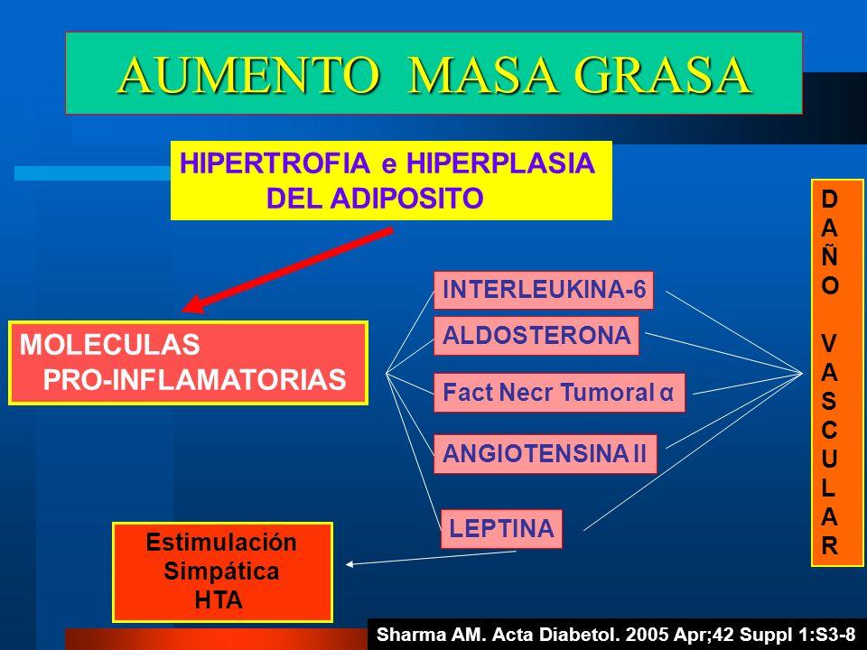 AUMENTO MASA GRASA HIPERTROFIA e HIPERPLASIA DEL ADIPOSITO MOLECULAS PRO-INFLAMATORIAS LEPTINA ALDOSTERONA Fact Necr Tumoral α ANGIOTENSINA II INTERLE