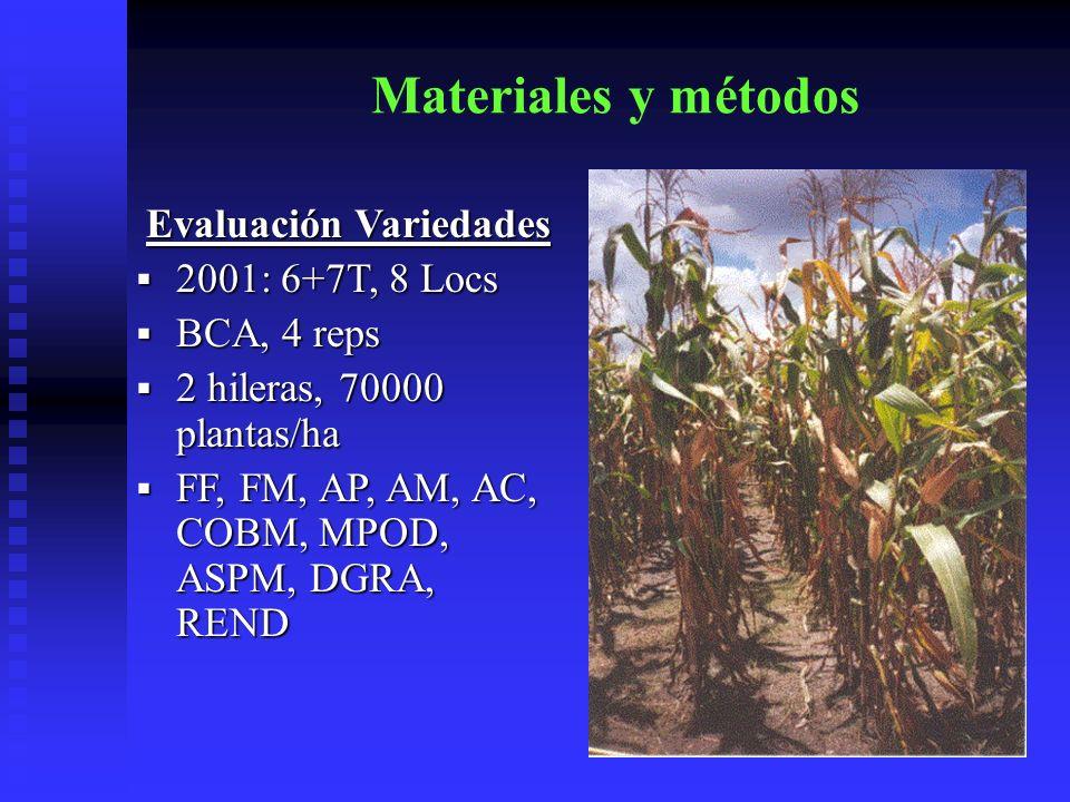 Materiales y métodos Evaluación Variedades 2001: 6+7T, 8 Locs 2001: 6+7T, 8 Locs BCA, 4 reps BCA, 4 reps 2 hileras, 70000 plantas/ha 2 hileras, 70000