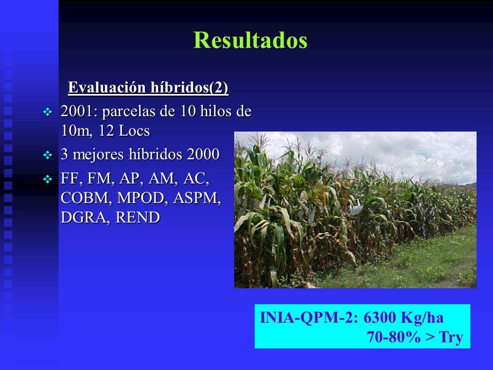 Resultados Evaluación híbridos(2) 2001: parcelas de 10 hilos de 10m, 12 Locs 3 mejores híbridos 2000 FF, FM, AP, AM, AC, COBM, MPOD, ASPM, DGRA, REND