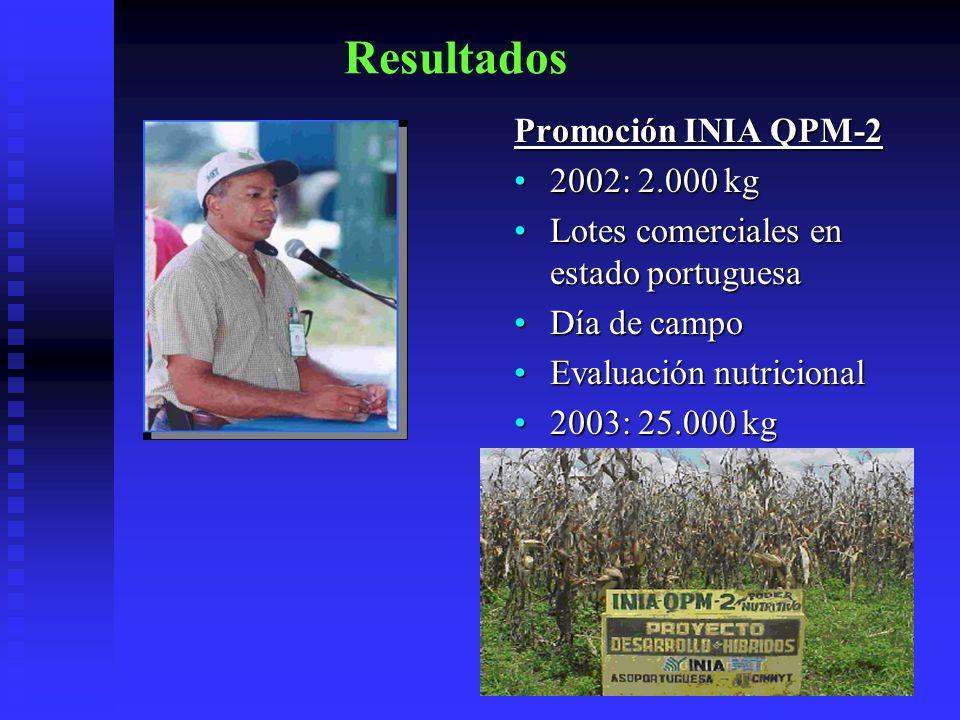 Resultados Promoción INIA QPM-2 2002: 2.000 kg Lotes comerciales en estado portuguesa Día de campo Evaluación nutricional 2003: 25.000 kg