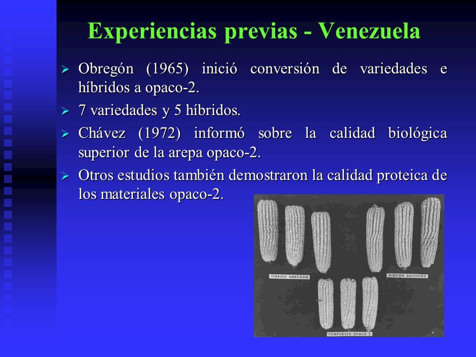 Experiencias previas - Venezuela Obregón (1965) inició conversión de variedades e híbridos a opaco-2. Obregón (1965) inició conversión de variedades e